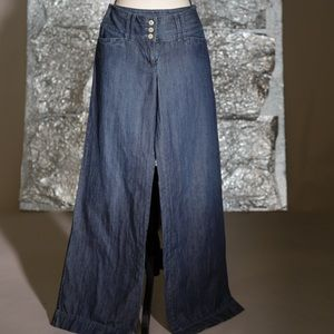 Ann Taylor Loft trouser wide leg jean